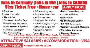 Latest Jobs In Germany Jobs in UAE Jobs In CANADA