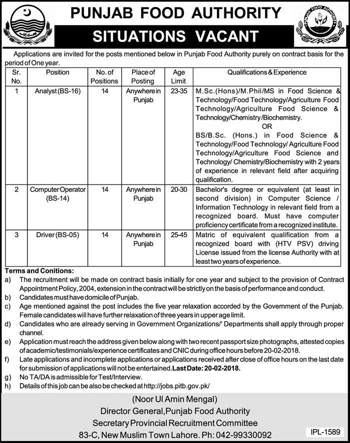 Punjab food Authorities Jobs