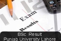 bsc-result-pujab-univeristy