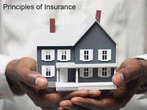 six-principles-of-Insurance