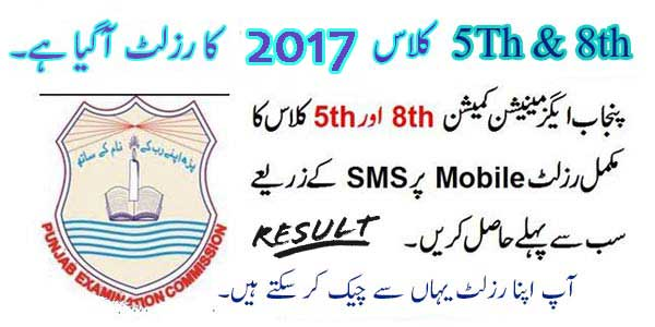 5th-8th-class-result-2017