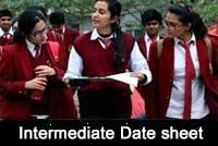 intermediate-date-sheet