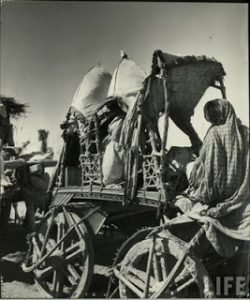 Great migration of 1947 independence of Pakistan (26)
