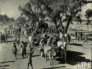 great migration of 1947 independence of pakistan photos