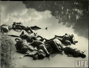 peoples dies bodies while idia pak partition